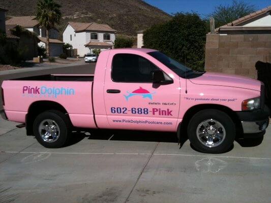 Glendale AZ Pool Service Company | Pink Dolphin Pool Care