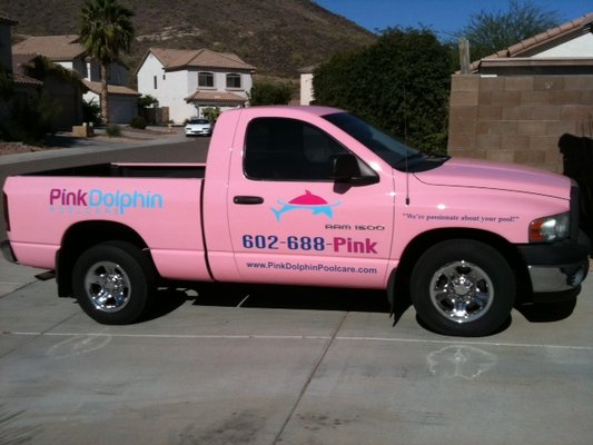 Glendale AZ Pool Service Company | Pink Dolphin Pool Care